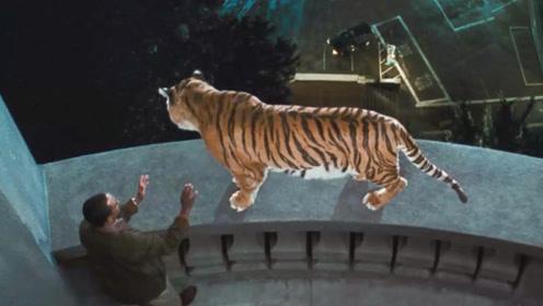 男子天生能听懂动物语言,还成功救下一只想跳