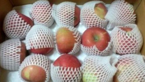 水果网套不要丢,放在厨房别提多厉害,一年省下几百块,学会不亏