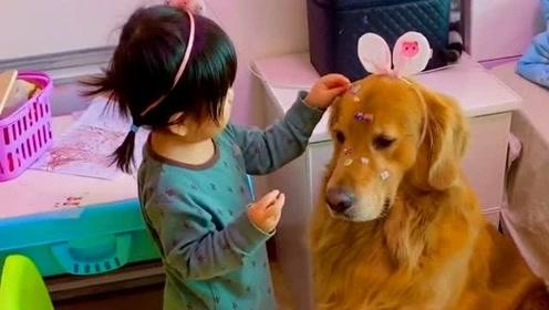 人类幼崽早期驯服工具猫狗的珍贵视频,宠物和孩子日常,一起成长!