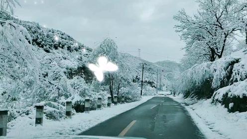 迷人的雪景,
