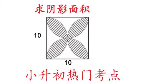 小升初数学热门考点:求阴影部分的面积,看老