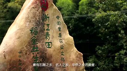 城市宣传片《发现家乡之美·中国青田》
