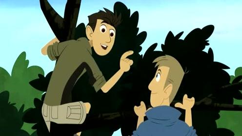 《动物兄弟》马丁的儿子偷了恐龙的基因,制造