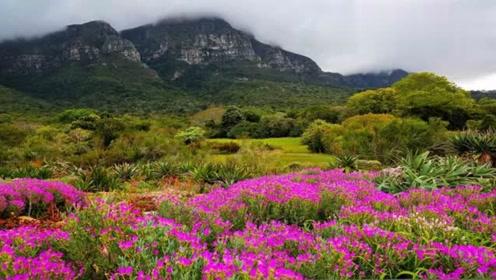 南非国家公园自然风景摄影图片欣赏