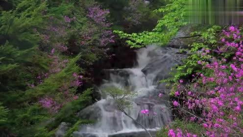 洗涤心灵的音乐《水晶花园》,轻轻飘过我的耳