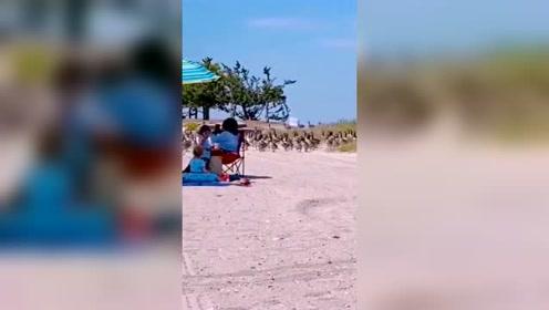 太社会了,冲进美女遍地的海滩,浩浩荡荡