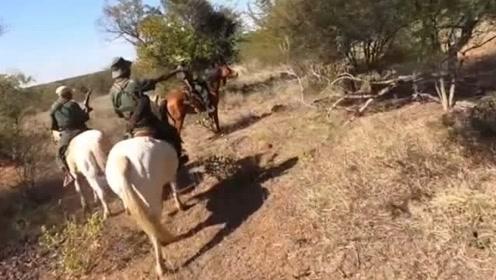 非洲草原陷阱重重,狮语者参加反盗猎巡逻