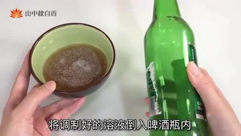 家里蚊子太多?只需一个啤酒瓶,轻松消灭蚊子