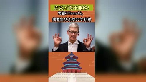 库克不得不服软!原来苹果没发布iPhone12是这个原因!