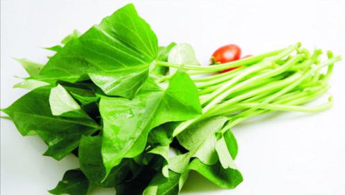 """番薯叶被香港人称为""""蔬菜皇后"""",经常吃这5个好处自动找上门"""