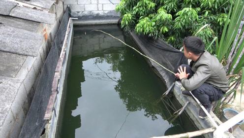 储水池里游着大量鱼群,小伙半天没钓上一条,各位钓友指点一二