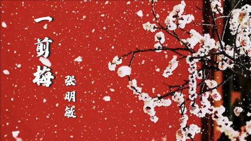 张明敏一首《一剪梅》,熟悉的旋律,不输费玉清