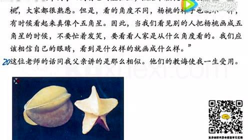 冀教版三年级语文上册17 画杨桃