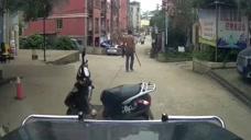 路怒男子把车横停在路中间,司机发现不对赶紧倒车,荒唐一幕被拍下