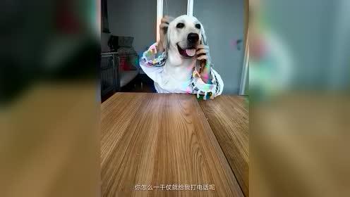 热门小视频 打他!打他!