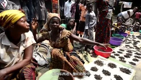 让小姐姐尖叫的毛毛虫,竟成非洲最受欢迎美食,一杯1000法郎!