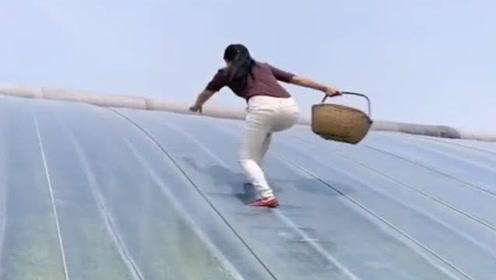 农村美女爬大棚,接下来这操作,我都看傻眼了!