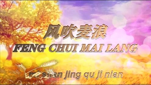 风吹麦浪电子音乐相册(2020.9.27)