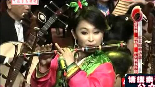器乐合奏《红太阳照边疆》演奏 曾格格 冯晓泉 中央民族乐团