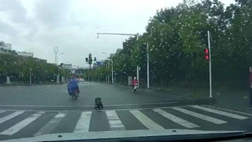 女童从电动车后座跌落家长浑然不知,追上家长后竟被猛踹一脚