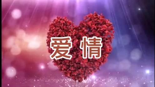 爱情是一种非常神圣而又高贵的精神需求。#爱情#社会热点#生命价值#修心养性#身心健康