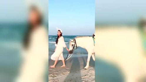 网红美女主播邵约伦牵着白马,漫步海滩,好唯美