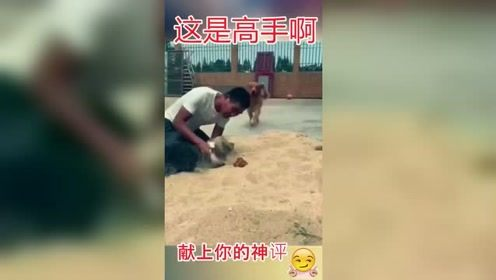 笑死人不偿命:好一个狗吃屎,这味道简直了!