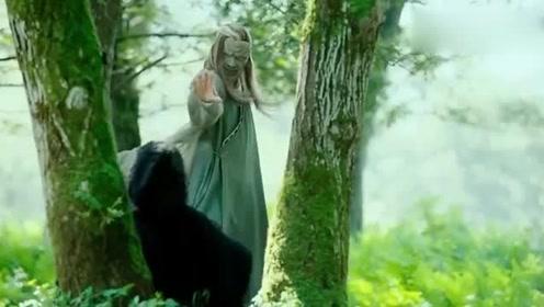 梅超风危在旦夕,神秘高手帮她隔空疗伤,这内力恐怕天下第一