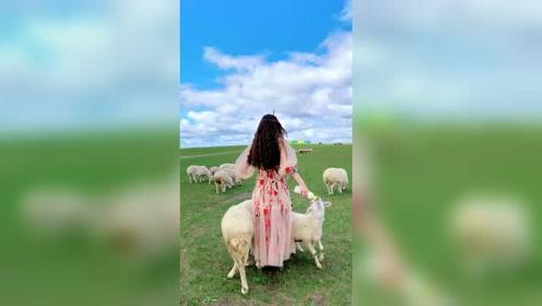 姑娘在家养羊,悠闲的生活