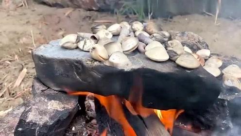 荒野美食:用厚厚的石板烤扇贝,这样能烤熟吗?