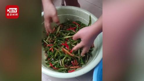 安徽一高校男生网购五斤辣椒在宿舍腌制:我们农村人的必备生活技能