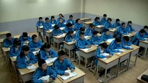 语文2011版九上《假如生活欺骗了你》山西毛老师优质课