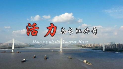 渔民上岸、矿山变绿、科技创新……看看活力四射的长江经济带