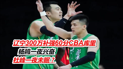 辽宁300万补强60分CBA库里,杨鸣一夜兴奋,杜峰一夜未眠?