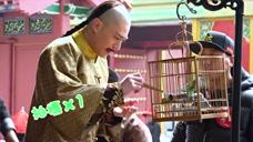 《如懿传》独家花絮:霍建华片场调皮学习喂鸟