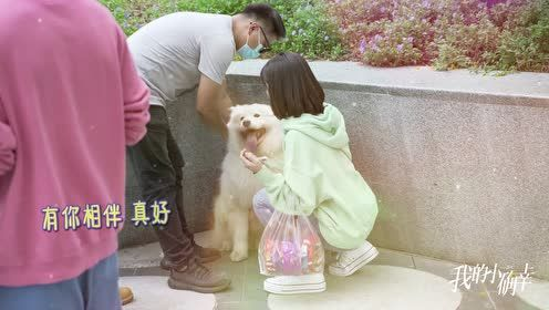 BTS: The doggie's favorite is Cong Rong | My Little Happiness
