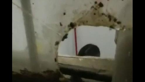 同租屋 浴室惊现摄像头嫌疑人已被抓