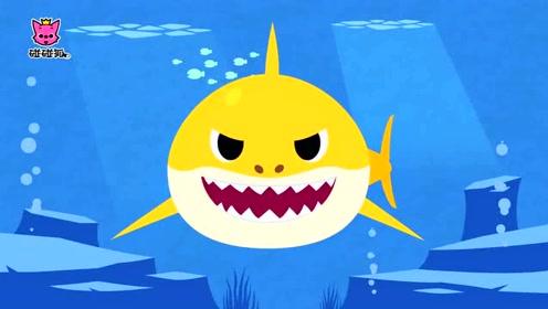 碰碰狐儿歌!鲨鱼宝宝体操图片