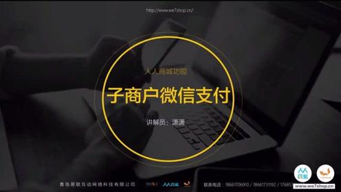【微智人人商城】NO.子商户微信支付视频教程