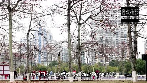 贵港市创建国家森林城市宣传片