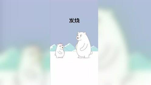 北极熊是怎么治发烧的呢?真是大开眼界