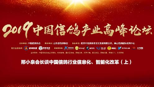 邢小泉会长谈中国信鸽行业信息化、智能化改革(上)