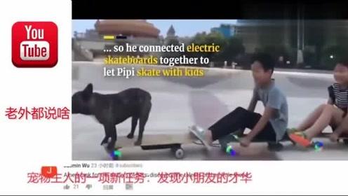 老外看中国,中国一只狗玩滑板的视频在国外火了,天呢,我连狗都不如