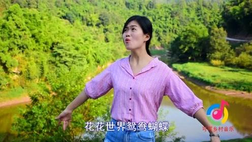 经典老歌,一曲《新鸳鸯蝴蝶梦》,勾起80、90的回忆