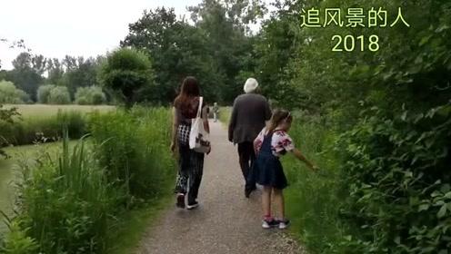 森林湿地中的美术馆@头条旅游,#六月看世界#,#毕业旅行啦#