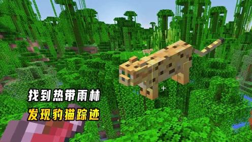 我的世界1.16联机469:找到热带雨林,发现最后一