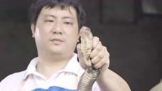 【花絮】广州人钟爱的眼镜蛇打边炉,现杀现煮