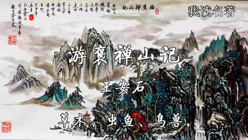 高中语文必修二10 游褒禅山记(王安石)