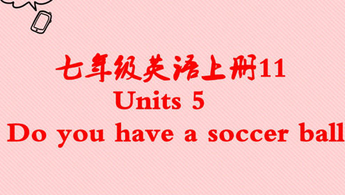 七年级英语上册Unit 5 Do you have a soccer ball?