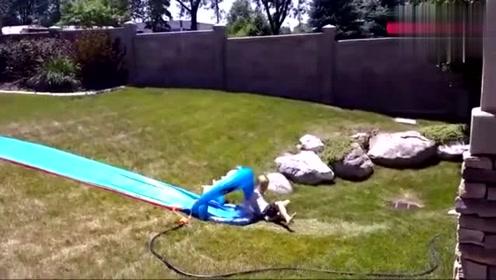 爆笑视频:国外小孩搞笑合集!简直笑死人啦!